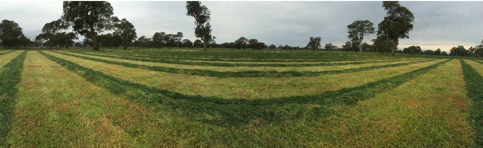First paddock down - one more to go!